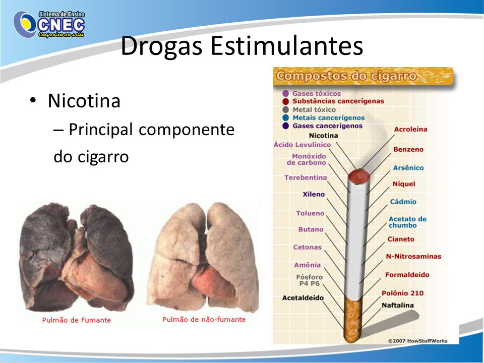 Drogas Estimulantes Nicotina Principal componente do cigarro