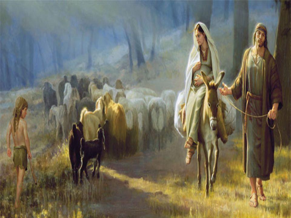 Vera Luzia Slides Está escrito na Bíblia: