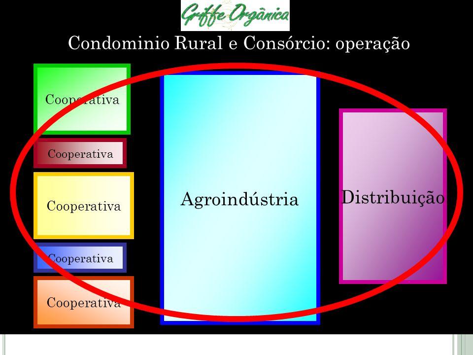 Condominio Rural e Consórcio: operação