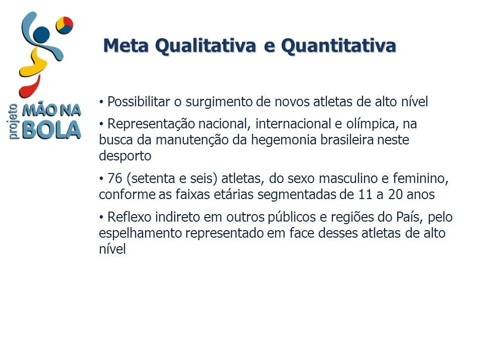 Meta Qualitativa e Quantitativa