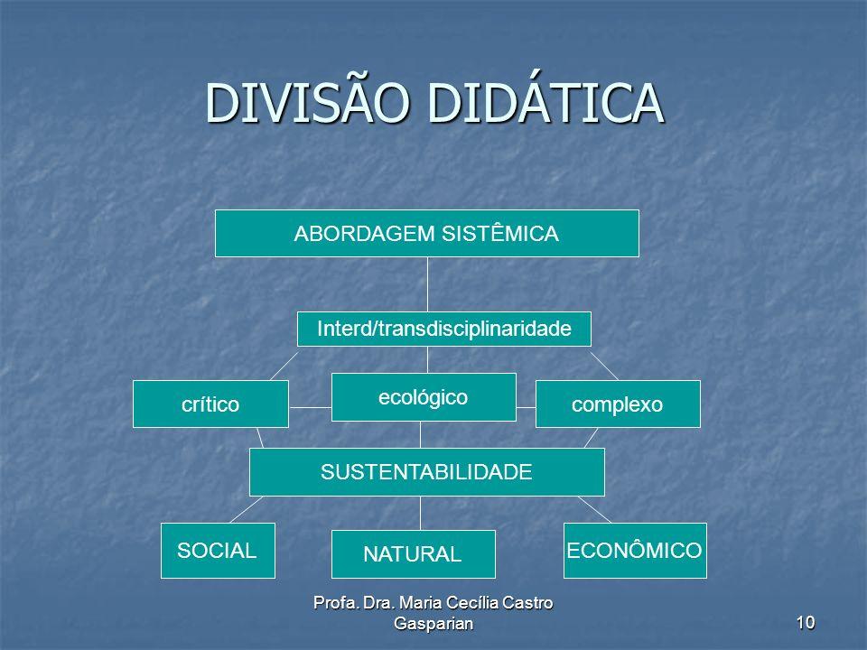 DIVISÃO DIDÁTICA ABORDAGEM SISTÊMICA Interd/transdisciplinaridade