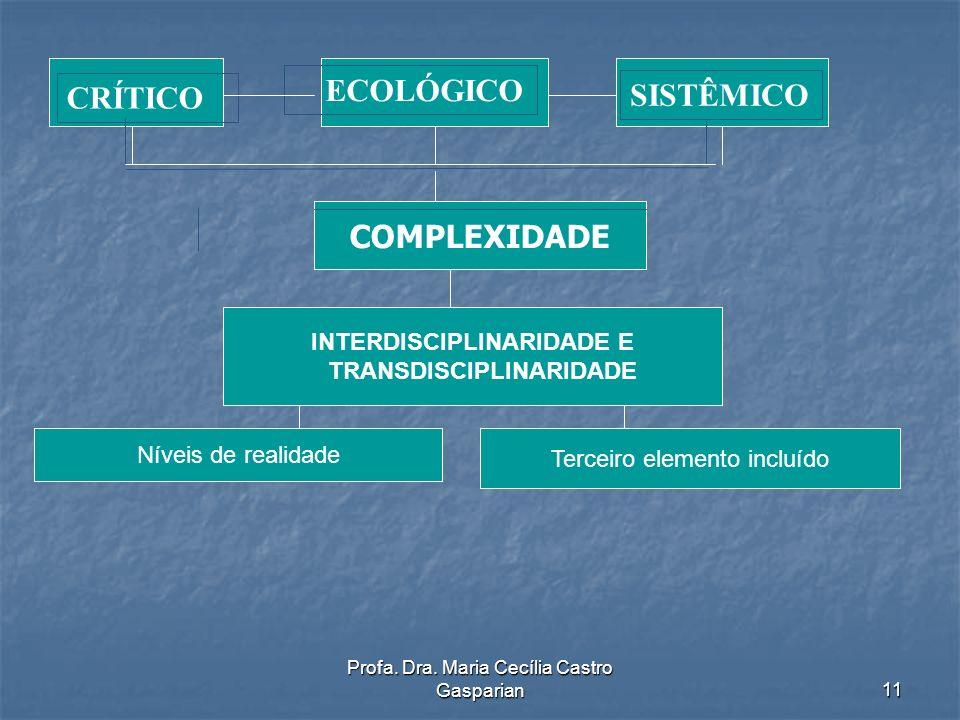 INTERDISCIPLINARIDADE E TRANSDISCIPLINARIDADE