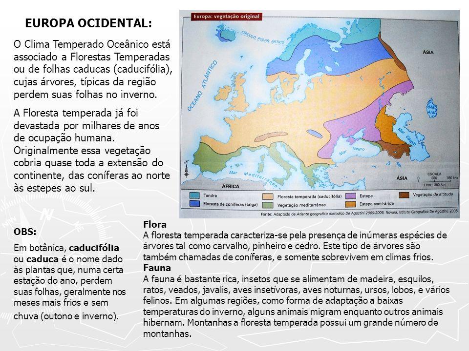 EUROPA OCIDENTAL: