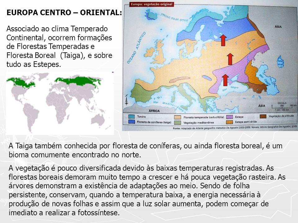 EUROPA CENTRO – ORIENTAL: