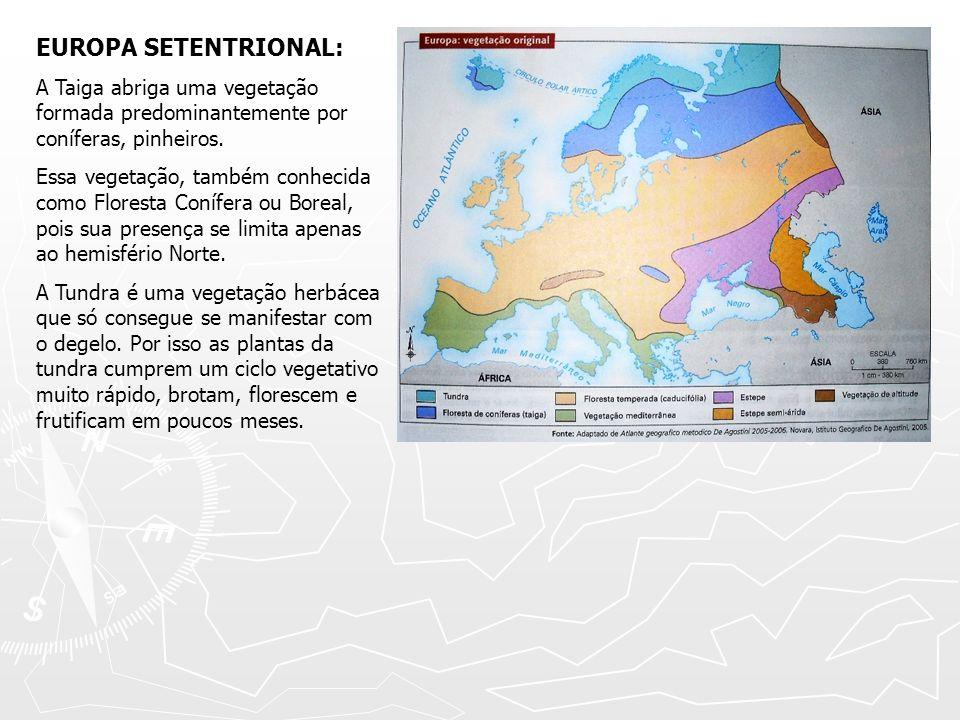 EUROPA SETENTRIONAL: A Taiga abriga uma vegetação formada predominantemente por coníferas, pinheiros.