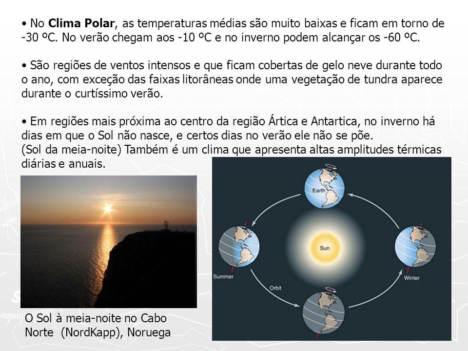 No Clima Polar, as temperaturas médias são muito baixas e ficam em torno de