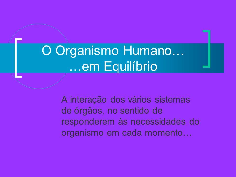 O Organismo Humano… …em Equilíbrio