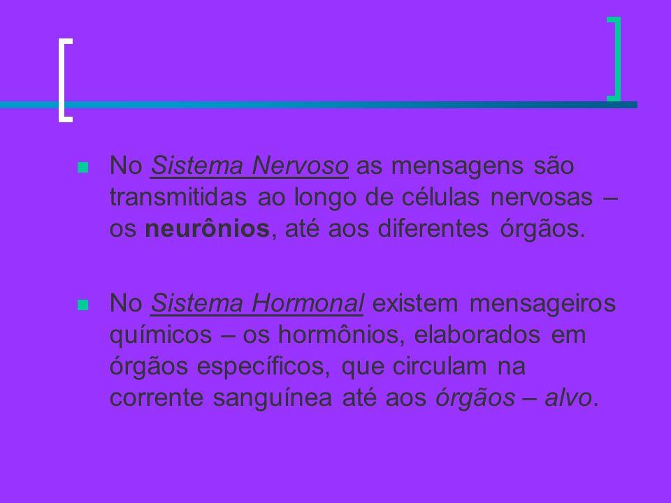 No Sistema Nervoso as mensagens são transmitidas ao longo de células nervosas – os neurônios, até aos diferentes órgãos.
