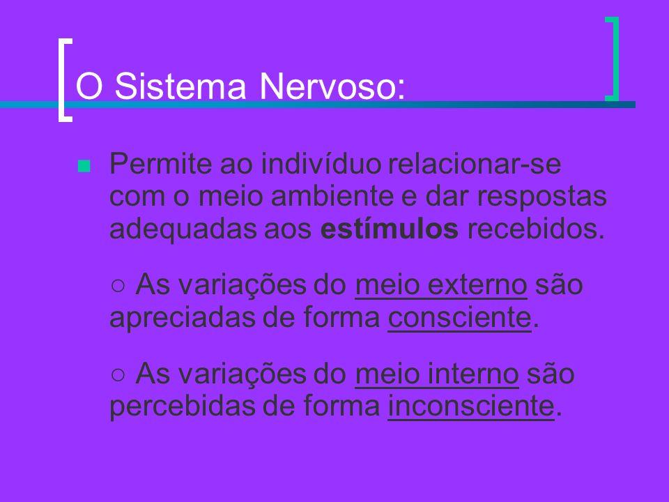 O Sistema Nervoso: Permite ao indivíduo relacionar-se com o meio ambiente e dar respostas adequadas aos estímulos recebidos.