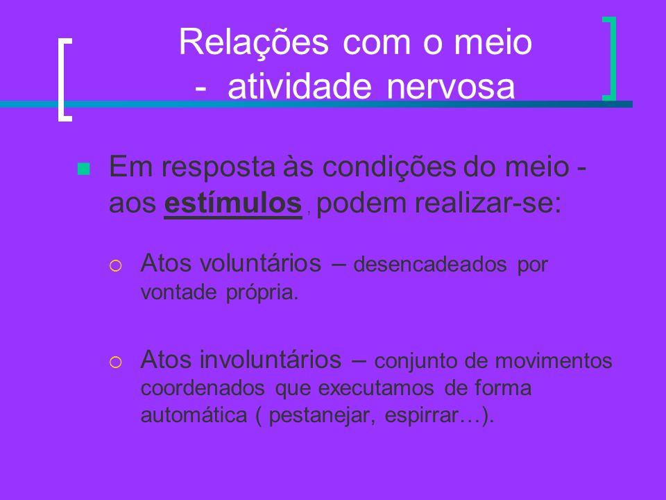 Relações com o meio - atividade nervosa