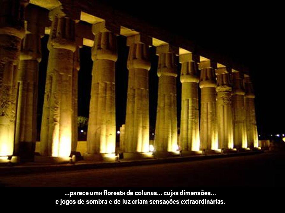 ...parece uma floresta de colunas... cujas dimensões...
