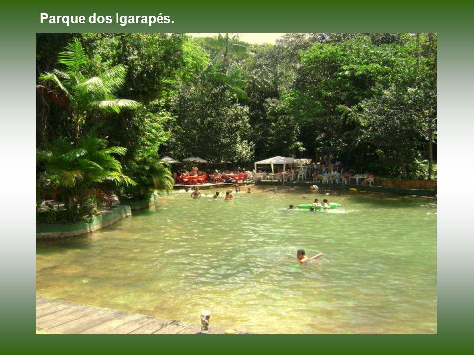 Parque dos Igarapés.