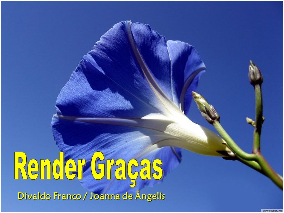 Render Graças Divaldo Franco / Joanna de Ângelis