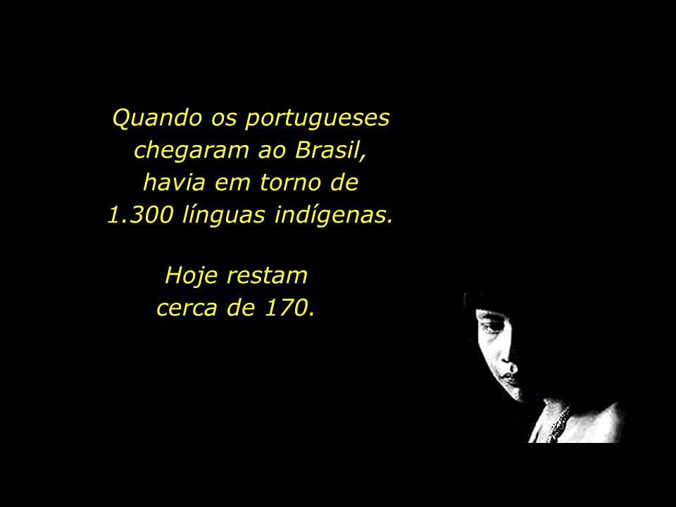 Quando os portugueses chegaram ao Brasil, havia em torno de 1