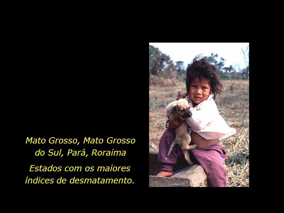 Mato Grosso, Mato Grosso do Sul, Pará, Roraima