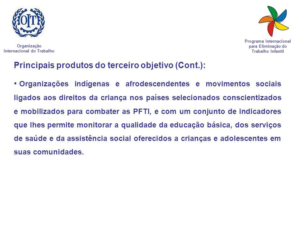 Principais produtos do terceiro objetivo (Cont.):