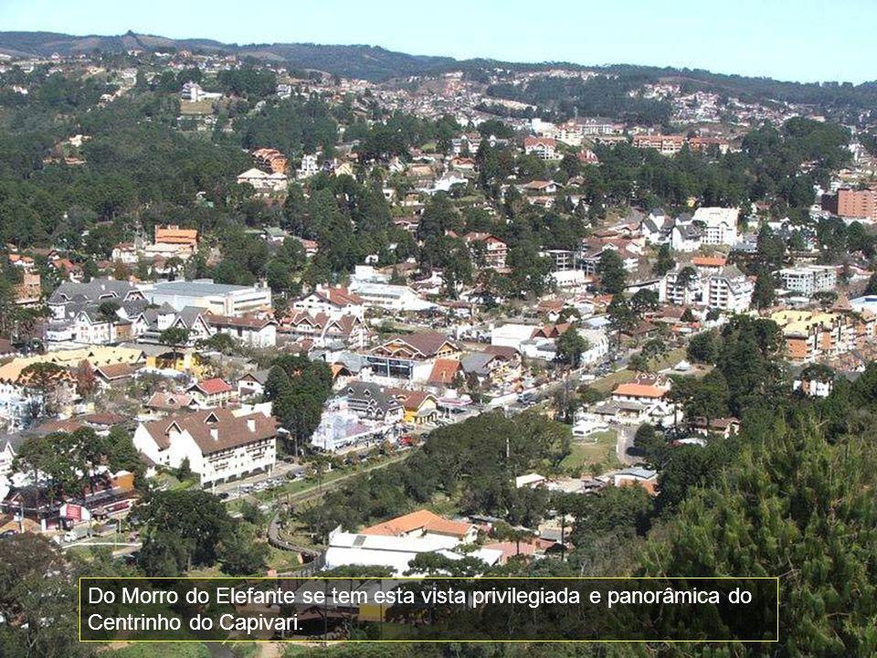 Do Morro do Elefante se tem esta vista privilegiada e panorâmica do Centrinho do Capivari.