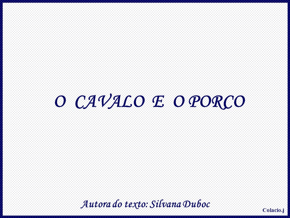 Autora do texto: Silvana Duboc