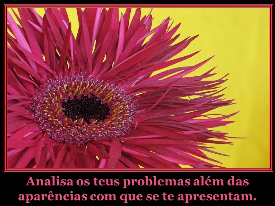 Analisa os teus problemas além das aparências com que se te apresentam.