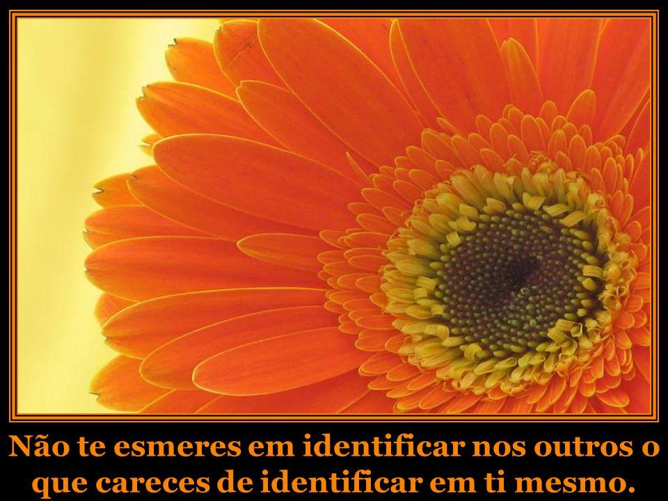 Não te esmeres em identificar nos outros o que careces de identificar em ti mesmo.