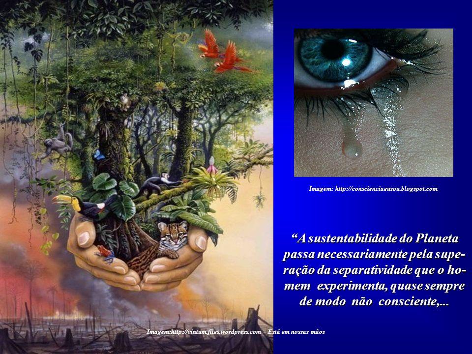 Imagem: http://conscienciaeusou.blogspot.com