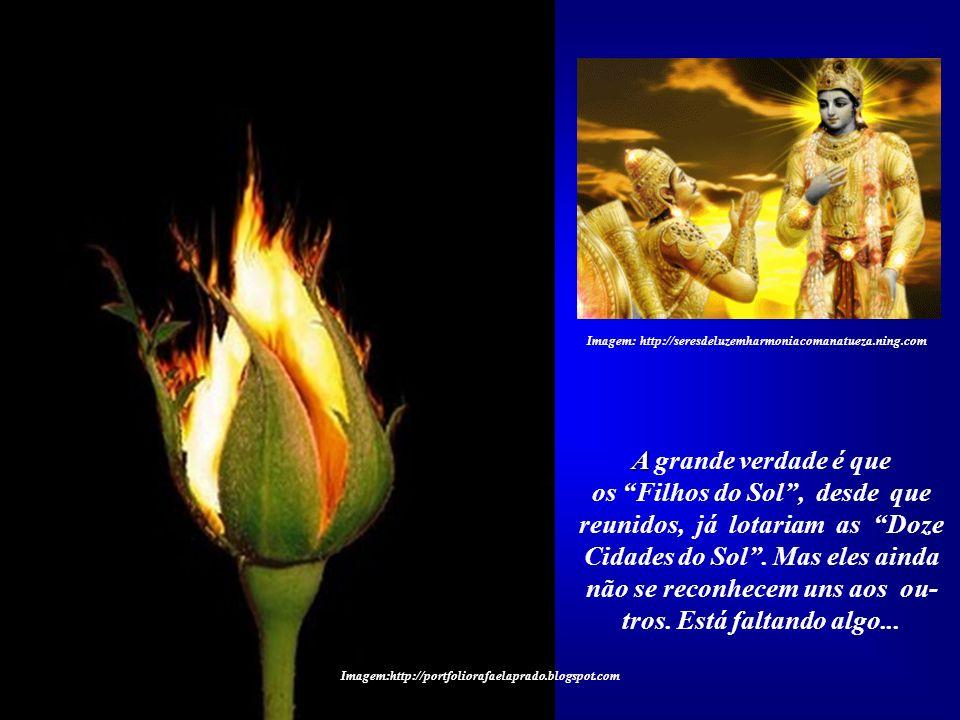 Imagem: http://seresdeluzemharmoniacomanatueza.ning.com