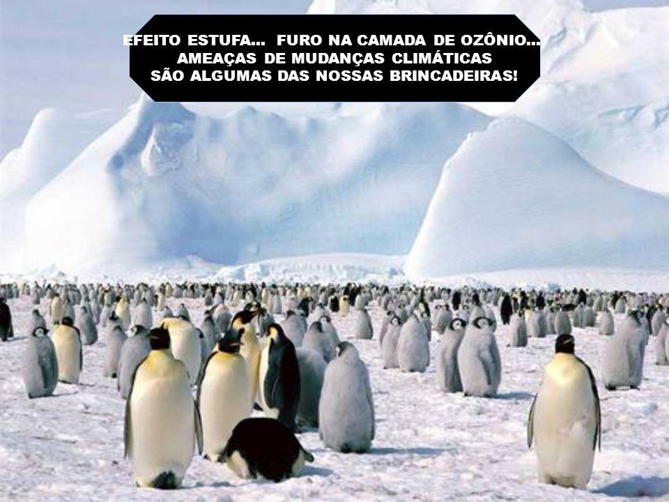EFEITO ESTUFA... FURO NA CAMADA DE OZÔNIO...