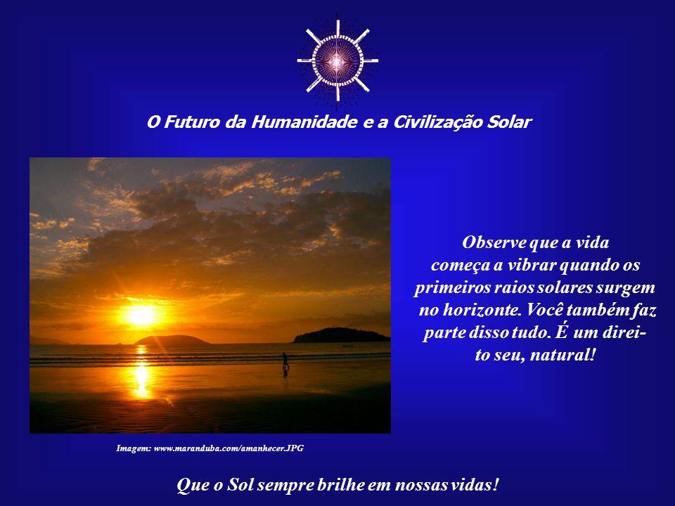 ☼ O Futuro da Humanidade e a Civilização Solar. Observe que a vida. começa a vibrar quando os primeiros raios solares surgem.