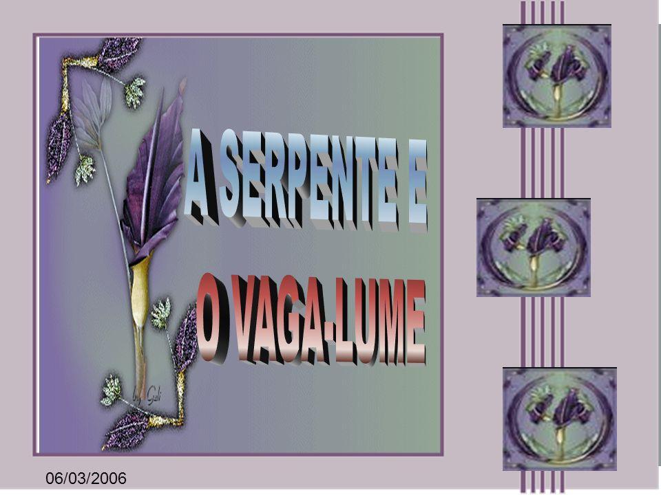 A SERPENTE E O VAGA-LUME 06/03/2006