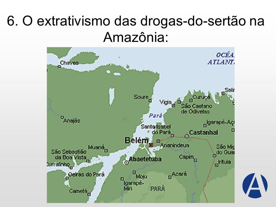 6. O extrativismo das drogas-do-sertão na Amazônia: