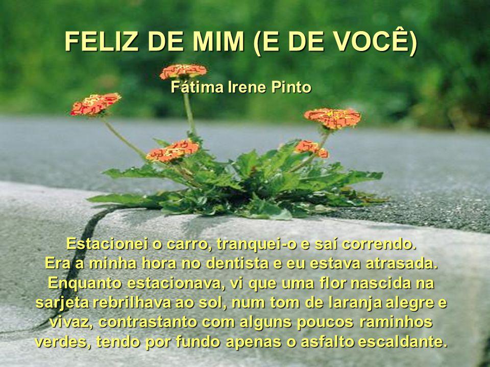 FELIZ DE MIM (E DE VOCÊ) Fátima Irene Pinto