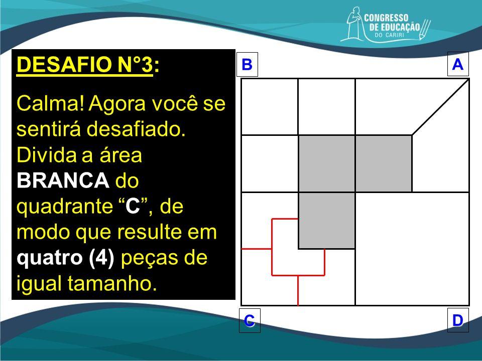 DESAFIO N°3: