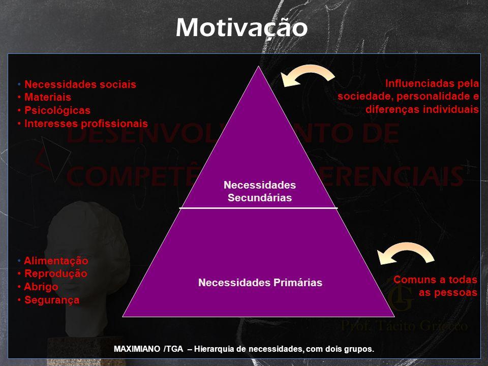 Motivação Necessidades sociais