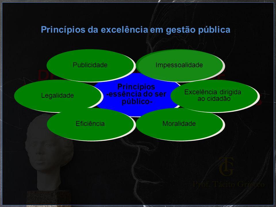 Princípios da excelência em gestão pública