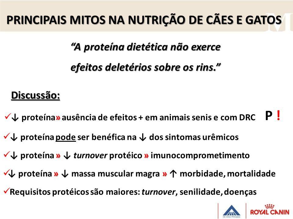 A proteína dietética não exerce efeitos deletérios sobre os rins.