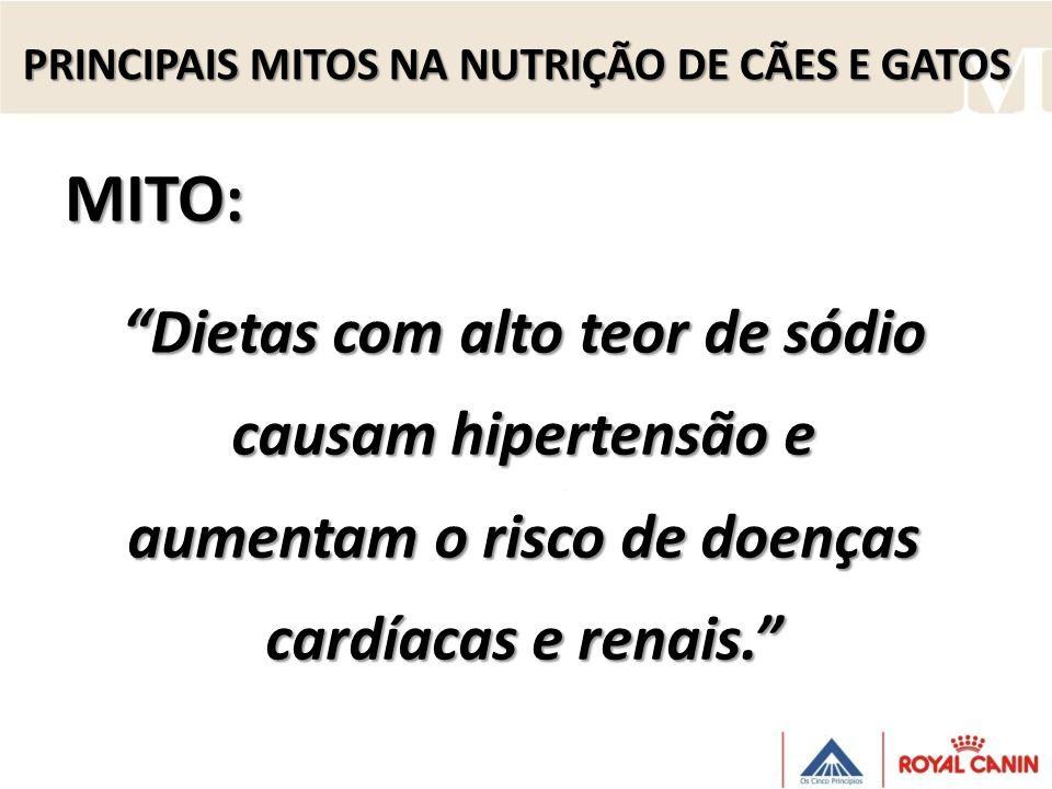 MITO: Dietas com alto teor de sódio causam hipertensão e