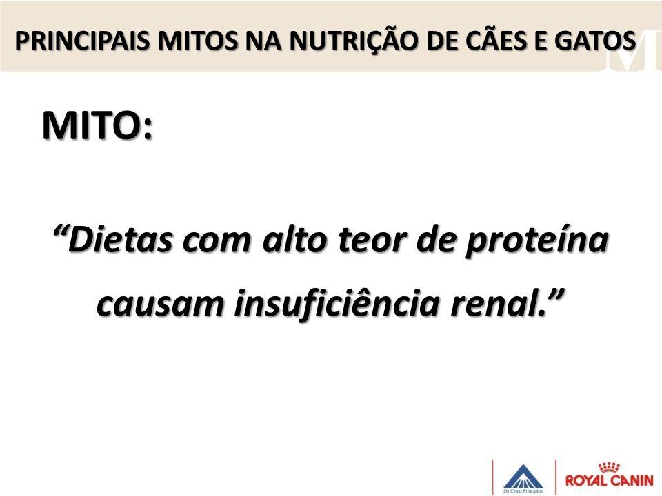Dietas com alto teor de proteína causam insuficiência renal.