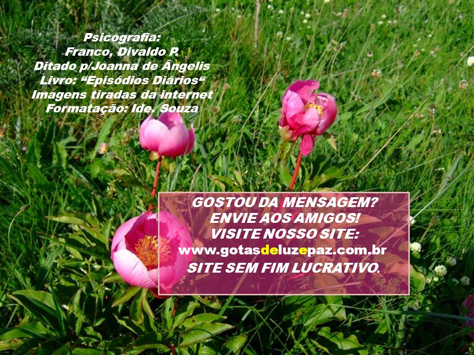 GOSTOU DA MENSAGEM ENVIE AOS AMIGOS! VISITE NOSSO SITE: