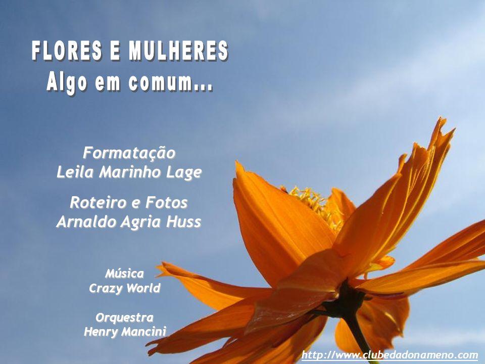 FLORES E MULHERES Algo em comum... Formatação Leila Marinho Lage