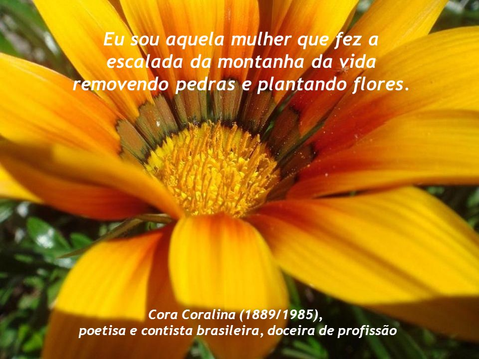 poetisa e contista brasileira, doceira de profissão