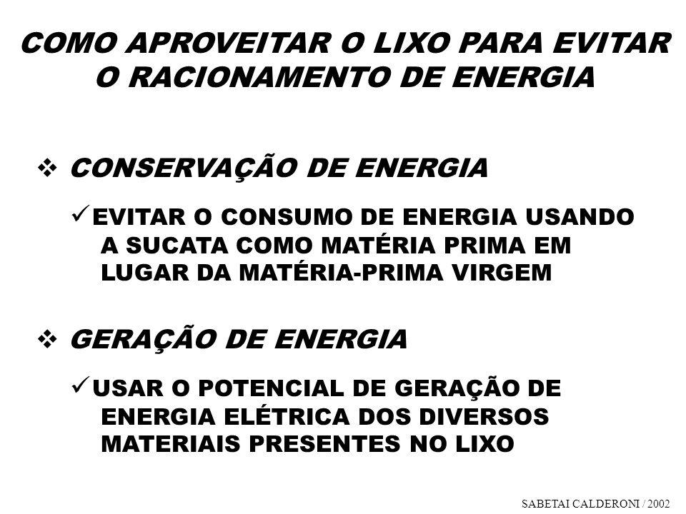 COMO APROVEITAR O LIXO PARA EVITAR O RACIONAMENTO DE ENERGIA