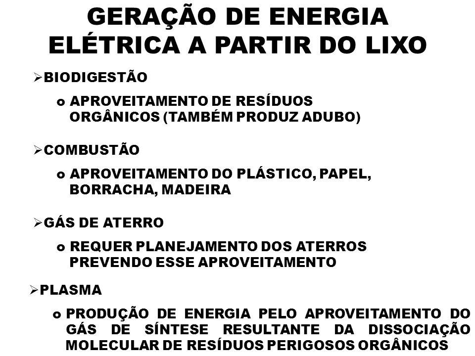 GERAÇÃO DE ENERGIA ELÉTRICA A PARTIR DO LIXO