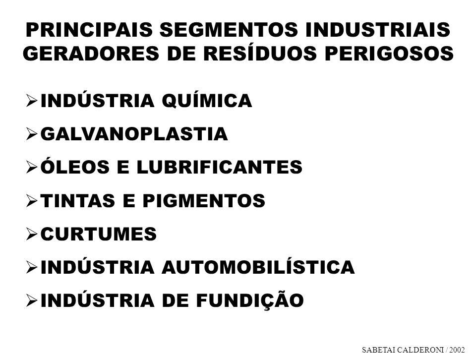 PRINCIPAIS SEGMENTOS INDUSTRIAIS GERADORES DE RESÍDUOS PERIGOSOS