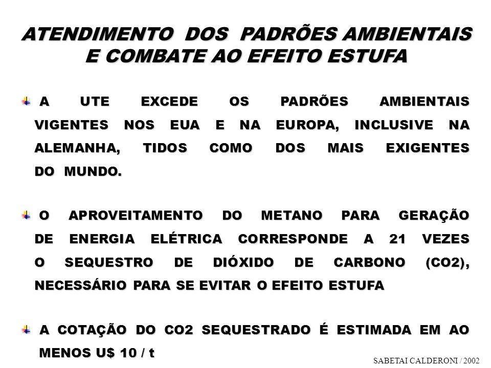 ATENDIMENTO DOS PADRÕES AMBIENTAIS E COMBATE AO EFEITO ESTUFA