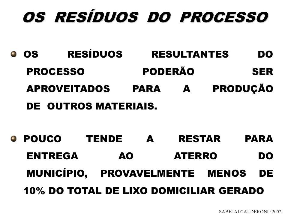 OS RESÍDUOS DO PROCESSO