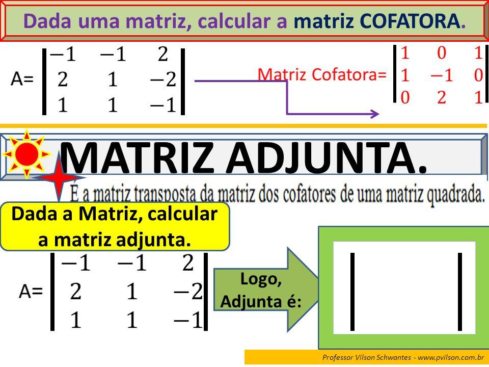 Dada uma matriz, calcular a matriz COFATORA.