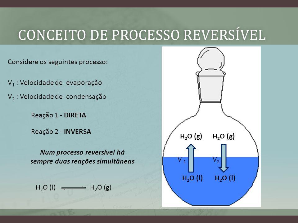 Conceito de processo reversível