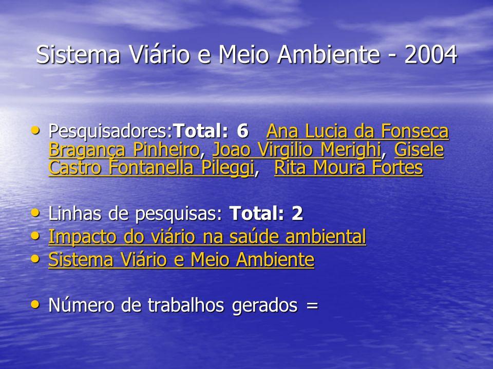 Sistema Viário e Meio Ambiente - 2004