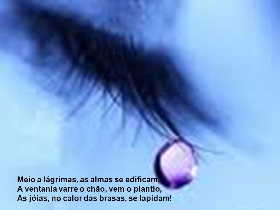 Meio a lágrimas, as almas se edificam,