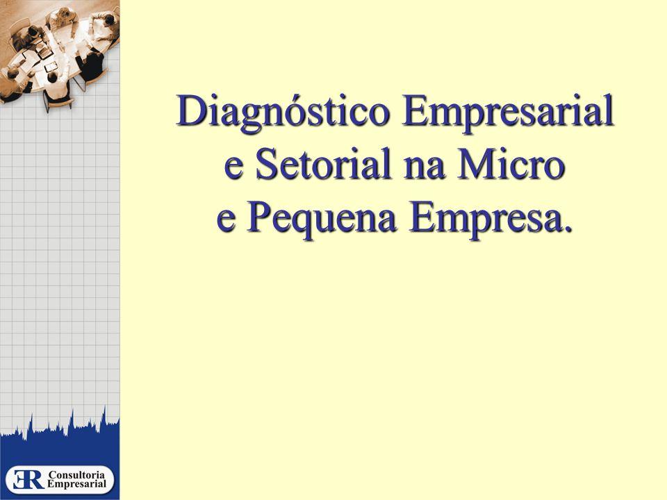 Diagnóstico Empresarial e Setorial na Micro e Pequena Empresa.